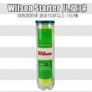 Wilson Starter Play Stage 1 Green Ball阶段1儿...